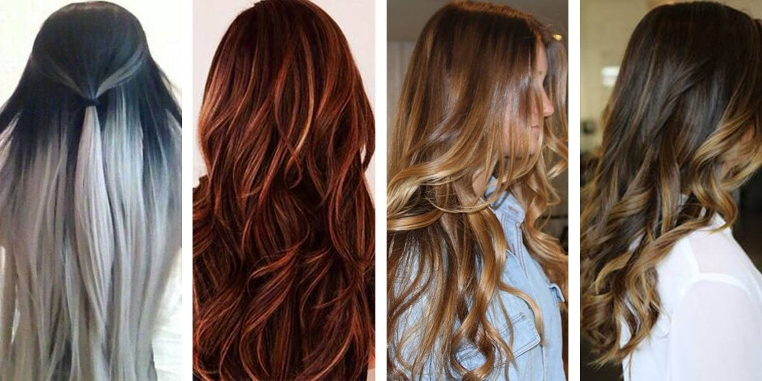 Black Blonde, Dark-Reddish Brown Blonde, Chocolate Blonde and Chestnut Blonde