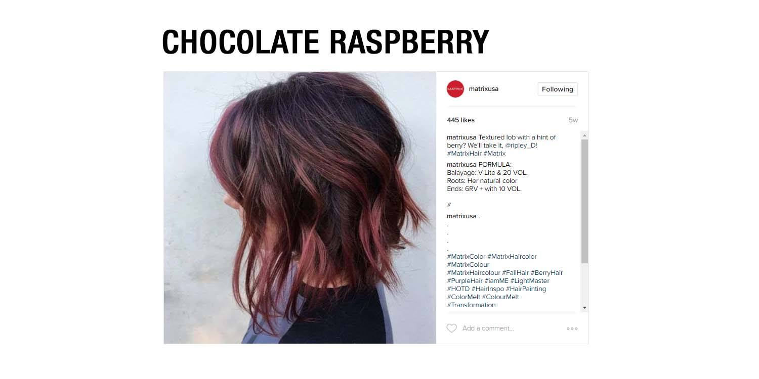 Raspberry Red Hair Color Formula Best Hair Color 2017
