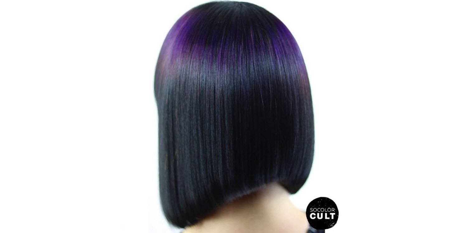 Orchid Halo highlights for dark hair